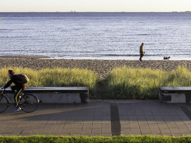 Opland udvikler landskaber - Kastrup Strandpark